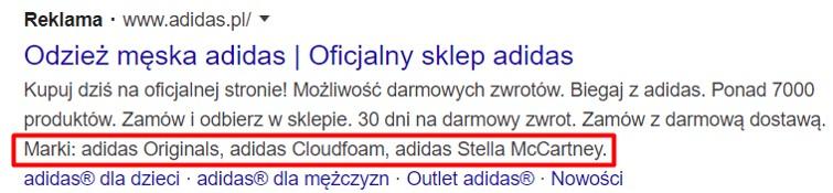 Google Ads - Rozszerzenia informacji w witrynie